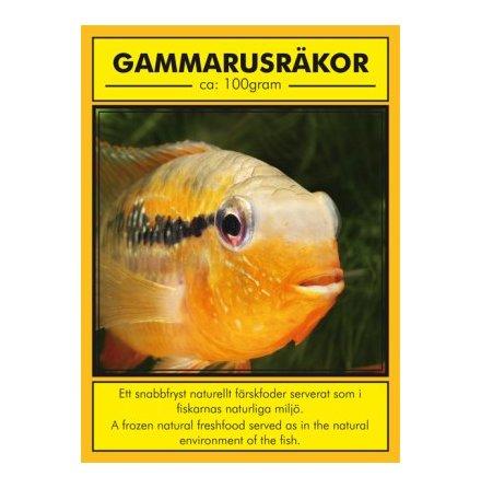 Gammarus räkor