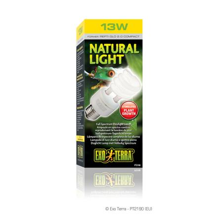 Natural Light (2.0) 13 W