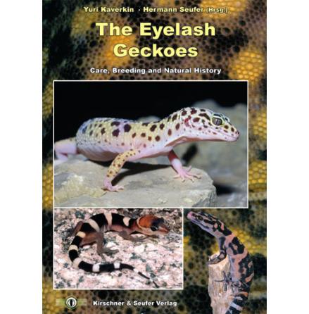 The Eyelash Gecko