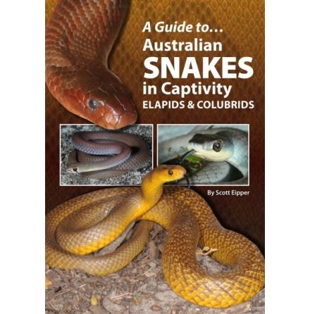 Australian Snakes in Captivity