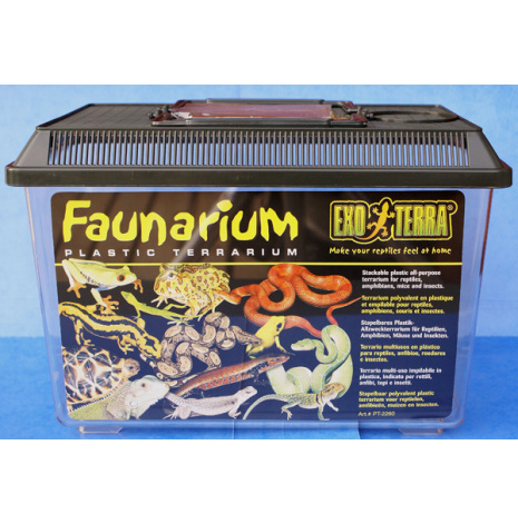 Plastterrarium 30x20x21