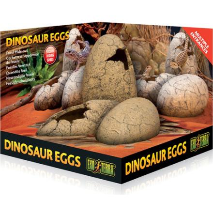 Grotta Dinosurie ägg