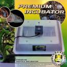 Dragon Premium incubator