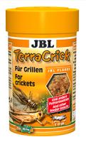 Terra Cricket