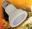 Led 6,5 W flood