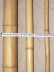 Bamburör Diam. 10-12 cm 1,8 m