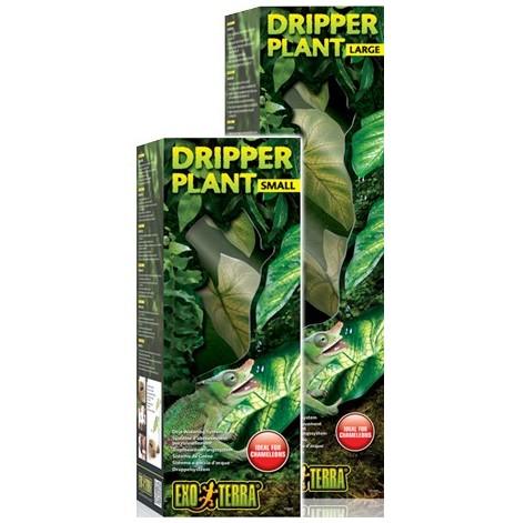 Dripper Plant S