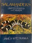 Salamanders of United States and Canada