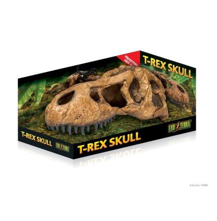 Dinosaurie Skalle
