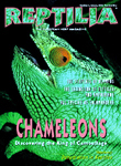 Reptilia Nr 1