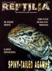 Reptilia Nr 21