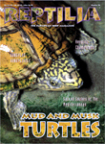 Reptilia nr 26