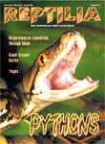 Reptilia Nr 27