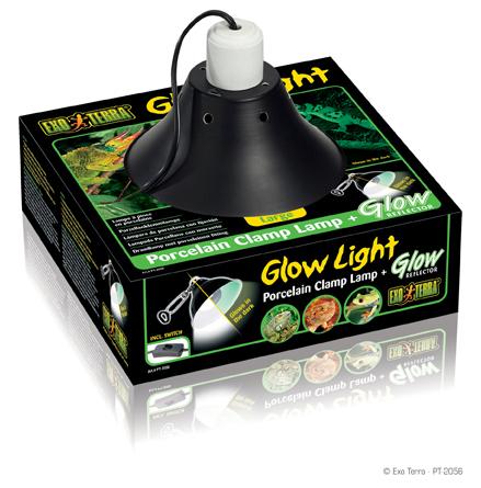 Glow Light Large
